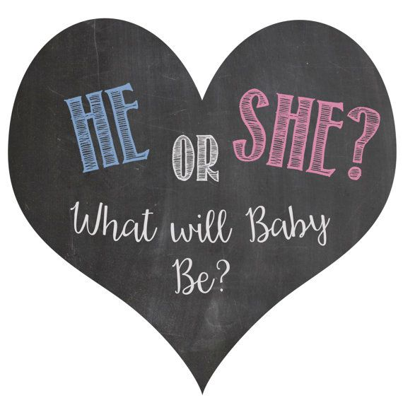 He or She what will baby be gender reveal balloon box sign chalkboard printable digital file BLUE and PINK