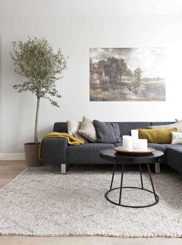De nieuwe zithoek van Guido en Margreet met olijfboom in vtwonen doe-het-zelf aflevering 5 | Make-over door Kim van Rossenberg.