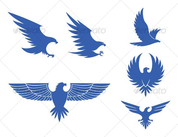 eagles design — Vector EPS #bald eagle #animal • Available here → https://graphicriver.net/item/eagles-design/77190?ref=pxcr