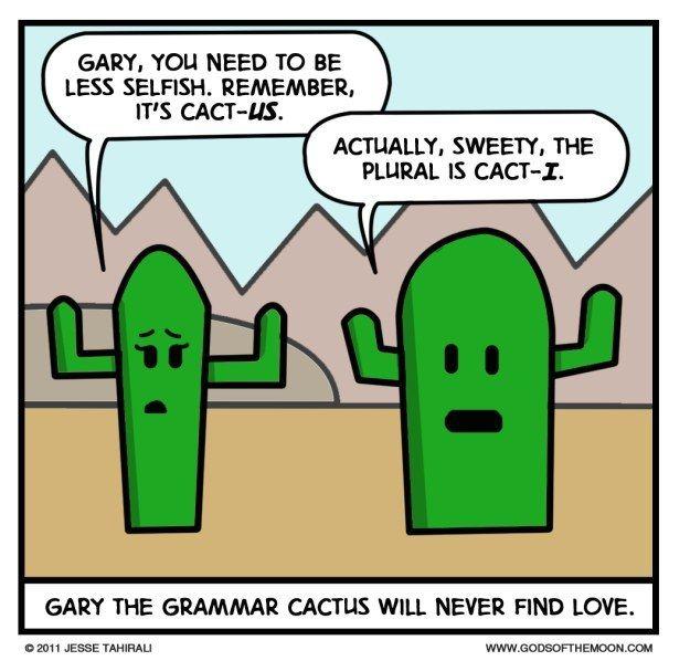 Single vs. Singular   Community Post: 25 Jokes And Puns No Grammar Nerd Can Resist
