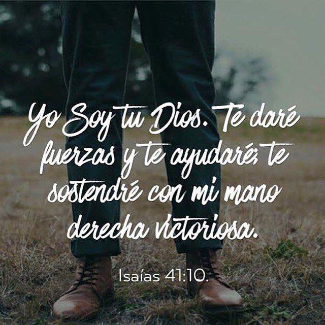 """ORACIÓN DE LA MAÑANA Señor mío y Dios mío quiero vivir este día con una actitud y acción de gracias hacia Ti por todo lo que me has dado en mi vida y por todo lo que me vas a dar a lo largo de este día: Te daré gracias Señor de todo corazón; te cantaré himnos delante de los dioses. Me arrodillaré en dirección de tu Santo templo para darte gracias por tu amor y tu verdad pues ha puesto tu nombre y tu palabra por encima de todas las cosas. Te llamé y me respondiste y aumentaste mis fuerzas""""…"""