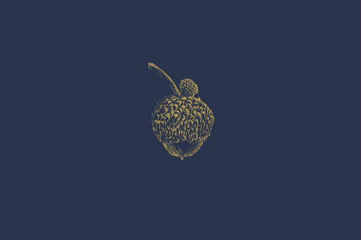 New Logo and Brand Identity for Jeffrey's by FÖDA Studio - BP&O