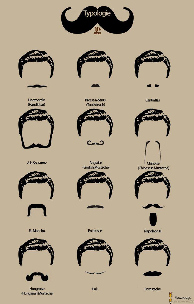 Typologie de moustaches. #Movember #infographie #moustache #poil