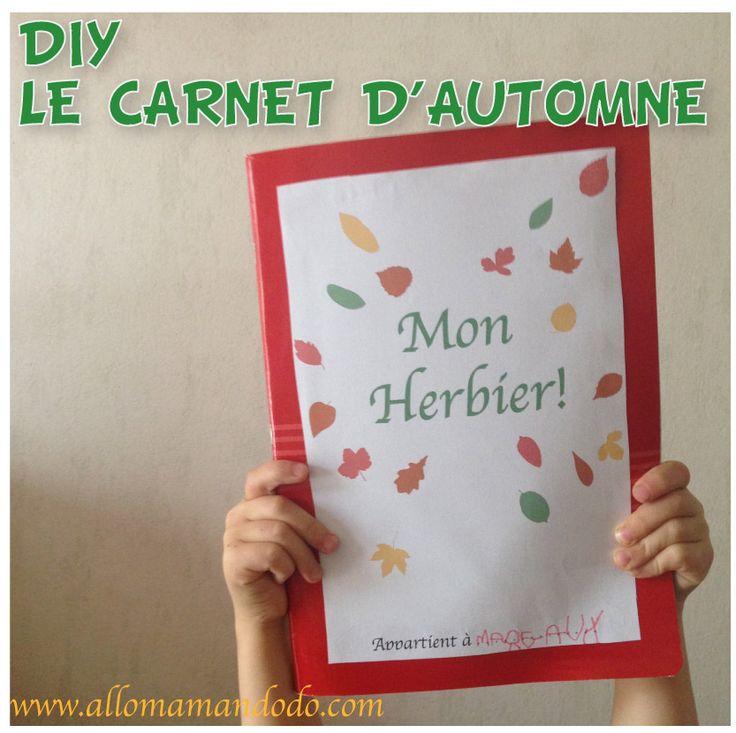 Fabrique ton carnet automne avec les feuilles d'arbres ramassées en forêt! Une super activité simple et gratuite à faire en vacances avec les enfants!