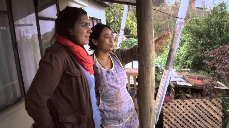 Cocina Mapuche: Caldillo de Harina Tostada / Tomé / CHile