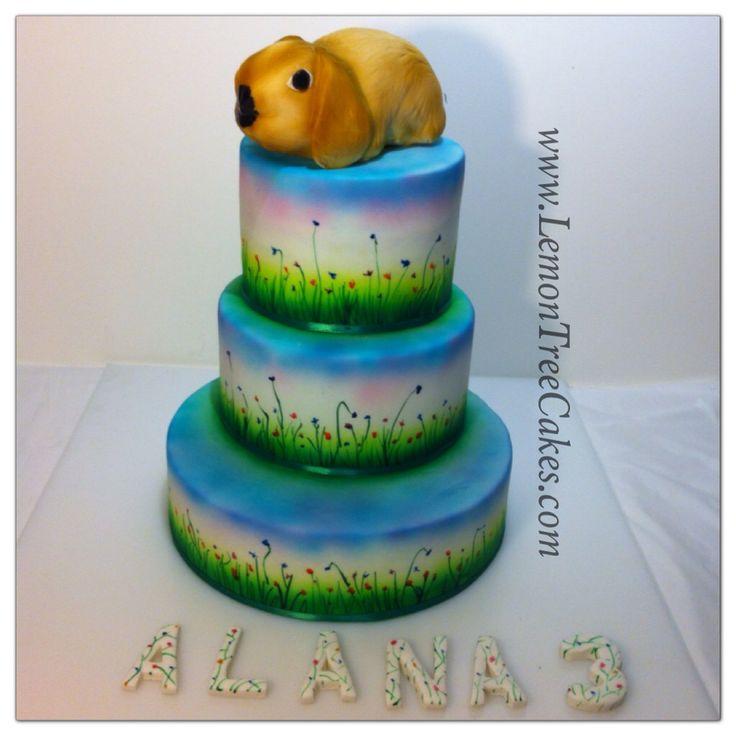 Bunny cake, hand painted cake