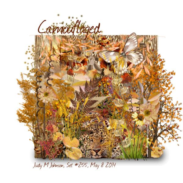 """Camouflaged, Wallpaper & Animals"" by judymjohnson on Polyvore: Animal"