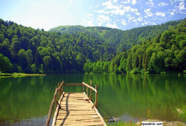 Orman manzaraları, Dağ manzaraları, Orman resimleri, Çok güzel manzaralar, Manzara görselleri, Orman fotoğrafları, En Güzel Orman Resimleri http://www.kpssdelisi.com/orman-resimleri/