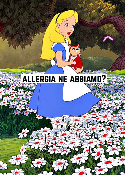 Umorismo allergico