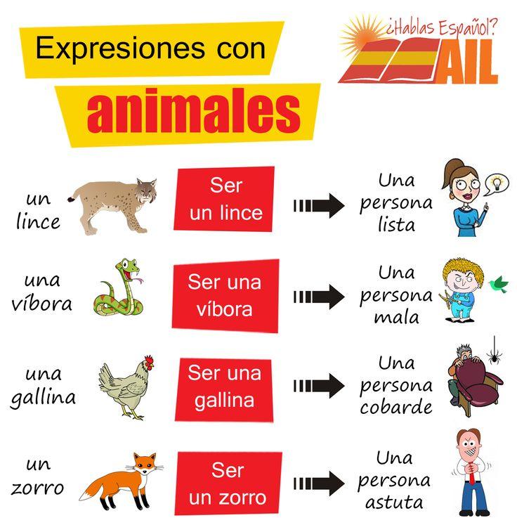 Al igual que con los colores hay muchas expresiones relacionadas con los animales, ¡aquí tenéis algunos ejemplos! ¿Estos animales vienen a significar lo mismo en vuestros países? #LearnSpanish #StudySpanish