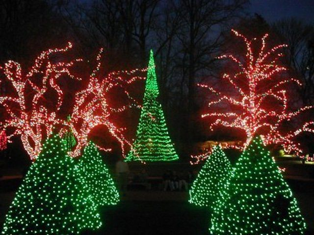 a christmas of brotherly love events and attractions in philadelphia christmas in americalongwood gardensholiday lightschristmas - Longwood Gardens Christmas Lights