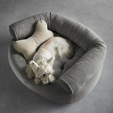 Comfy Couch Pet Bed Yay Adopt A Dog Pinterest Comfy Couches Pet Beds And Couch