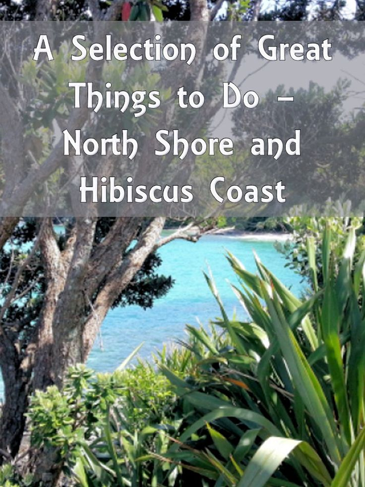 The North Shore and Hibiscus Coast regions of Auckland have lots of great things to do and places to go