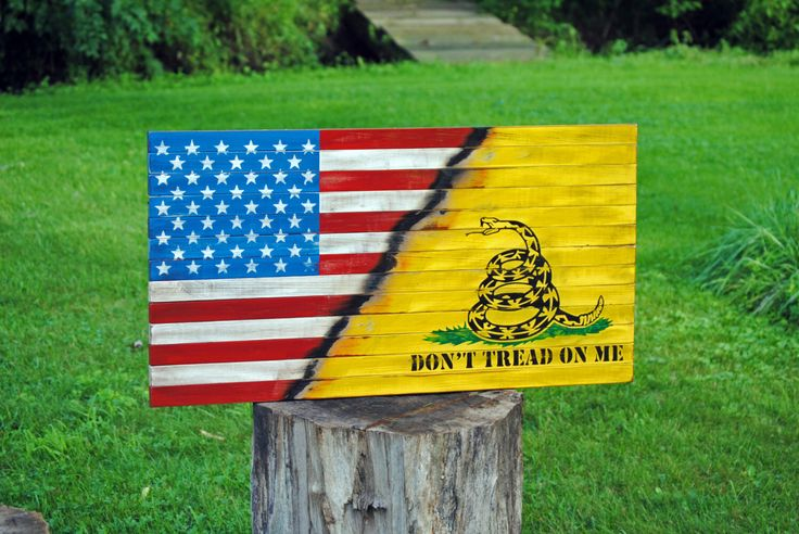 gadsden flag meaning today