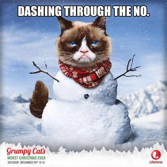 Funny Grumpy Cat Funny Christmas Quote For Moreu003eu003e ...