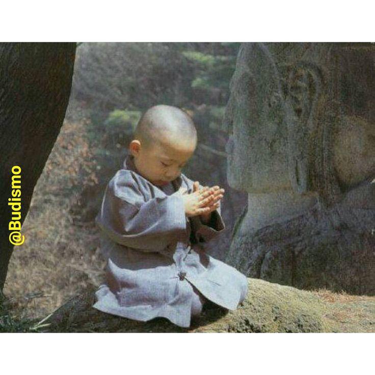 """""""Às vezes me pergunto o que o Buda pensaria disso, se voltasse e olhasse ao redor… """" Como começou tudo isso? Sabe?… """"Que foi que eu disse para que eles terminassem assim?"""". É dizer que nossa sociedade..."""