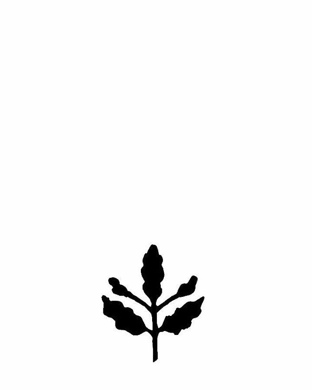#vsco#art #arts #white #minimalist#minimaltattoo #allwhite #white #whitetheme #digitalart #1907#12numara#fenerinmacivar #kanarya #istanbul #kadikoy #tattoo #sarikanarya#bnw #bnwmood #blackandwhite #blackart #siyah#siyahbeyaz #beyaz #fenerbahce#fenerbahçe #fener #sarilacivert #football #match