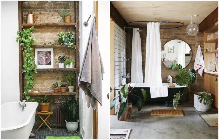 Растения в интерьере ванной комнаты