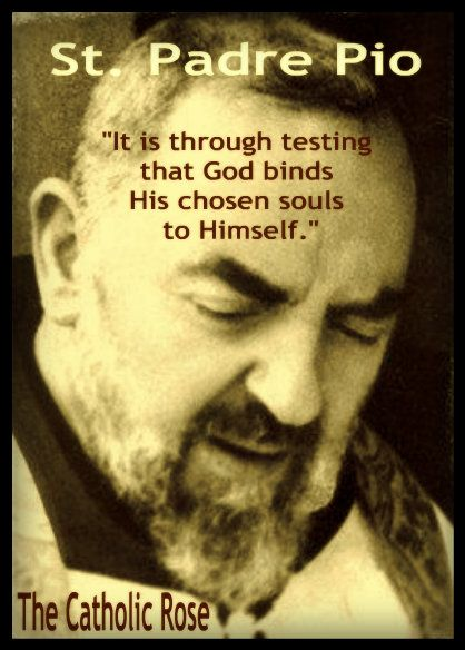 ~ St. Padre Pio... We need to hold on to this truth when we are being tested.