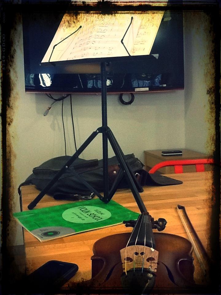 Violin - 계속 배운 이유는 아내에게 1인 연주회를 조그마하게라도 해주고 싶어서였음. 팩토리를 연주 연습 장소로 사용했는데.. 이제는 바이올린 소리도 내면 안되는 장소로 바뀌었음