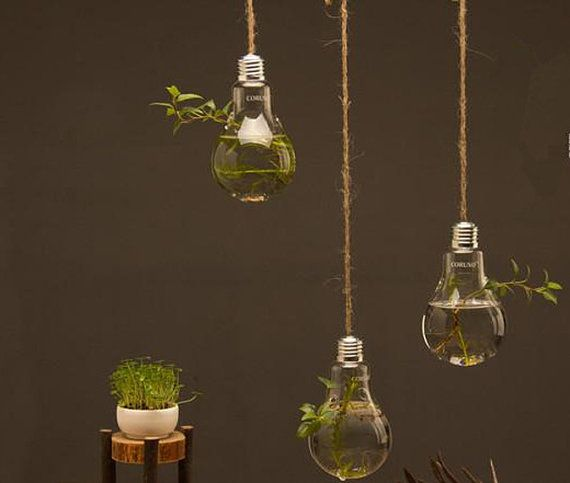 Hanging Light With Planter: Light Bulb Glass Hanging Planter Container Vase By