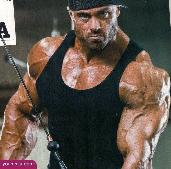 Pin by Tamer Diet Bodybuilding Exercises & Professional