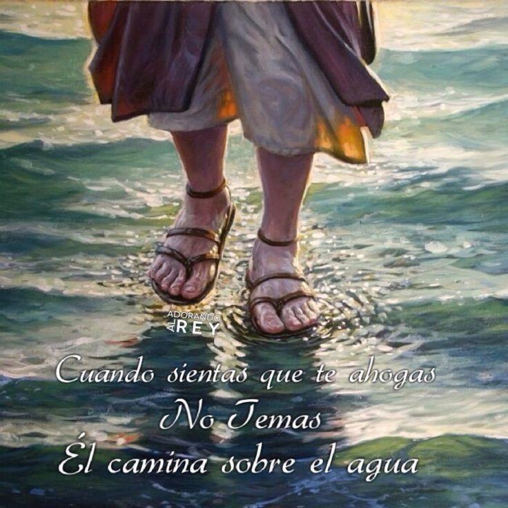 Cuando sientas que te ahogas, no temas, Él camina sobre el agua  #Dios #Jesus #Jesucristo #Cristo #Salvador #Salvavidas #EspirituSanto #Esperanza #Temor #Avivamiento #AdorandoalRey