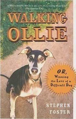 Walking Ollie Book Report Stephen Foster - The best estimate professional