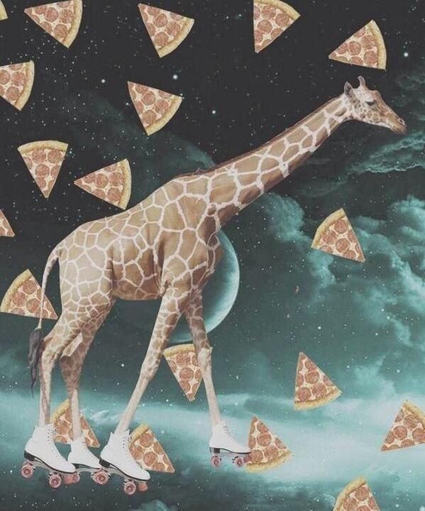 a giraffe roller skating in space around pizza - Imgur Roller