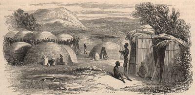 SOUTH AFRICA: A Kaffir Kraal; antique print 1882
