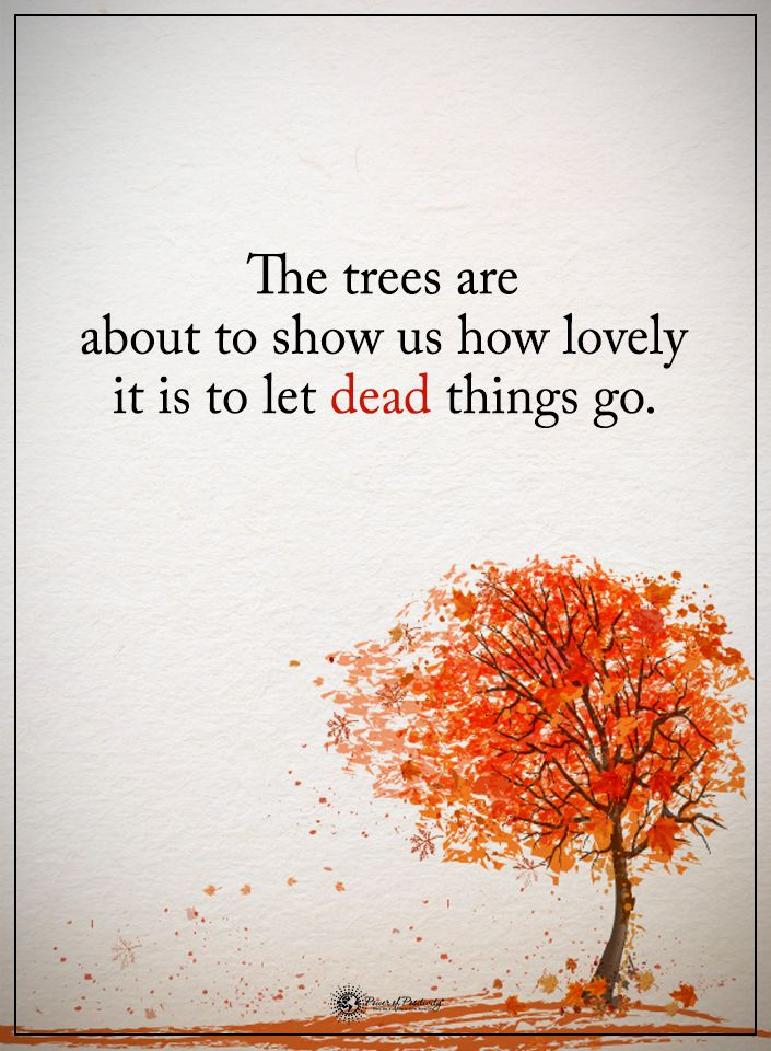 best 25  quotes about autumn ideas on pinterest