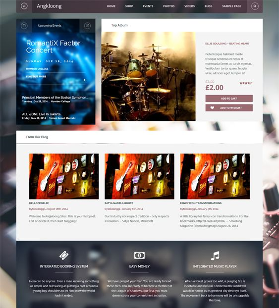 This music WordPress theme has a responsive layout, WooCommerce support, interactive sliders, an events calendar, Revolution Slider, MailChimp support, 12 custom widgets, built-in pagination, and more.