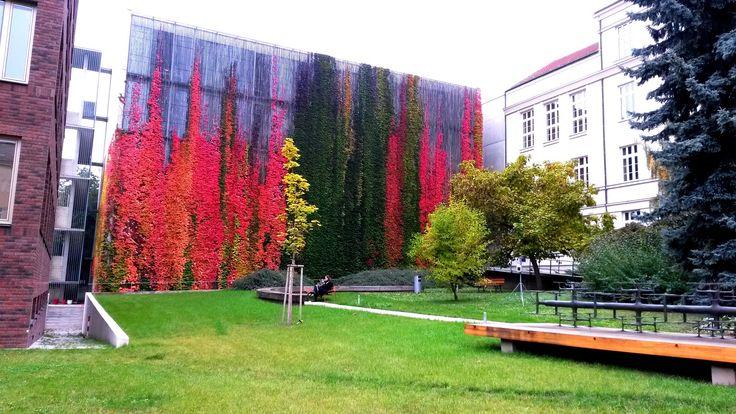Faculty of Arts Arna Novaka 1 Brno