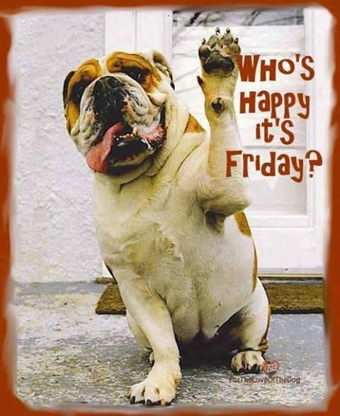 Two paws up! We are pro Friday! What are you doing to celebrate Friday this week?