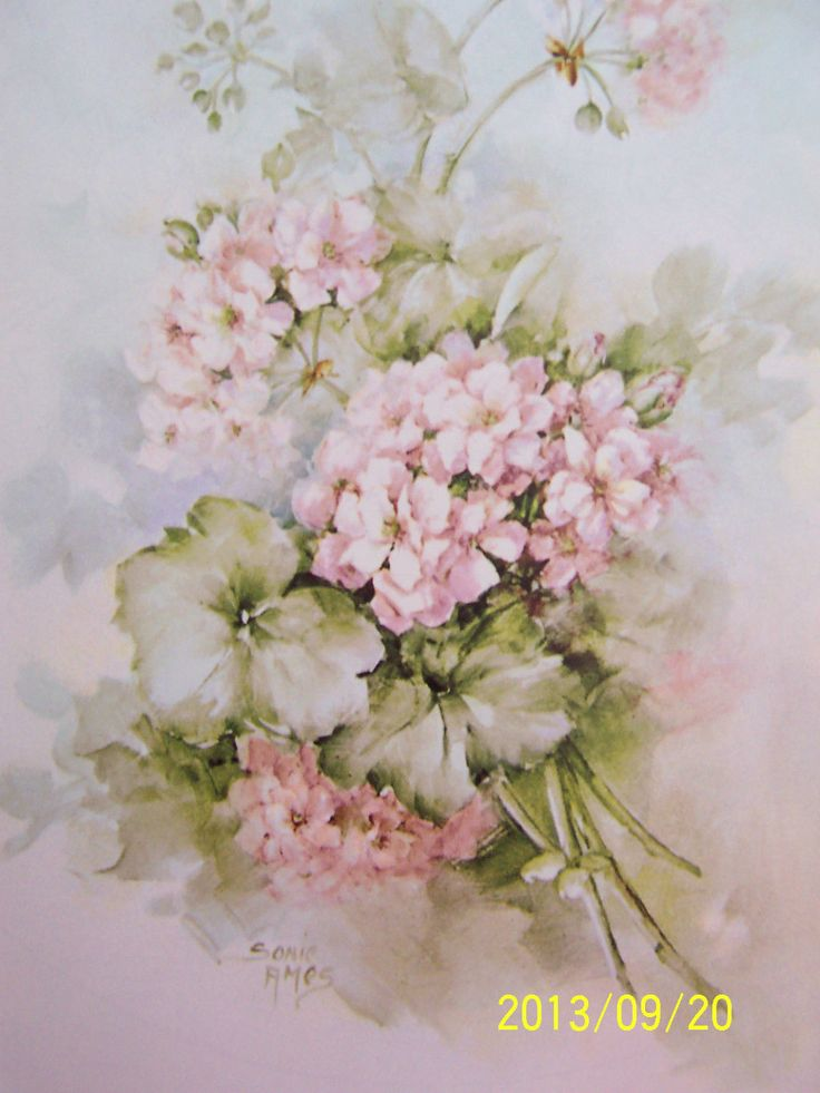"""China Painting Study 40 """"Ivy Geraniums"""" Sonie Ames 5 Pages 