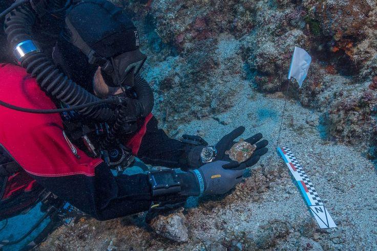 Los secretos que guarda un naufragio de hace dos mil años – Español
