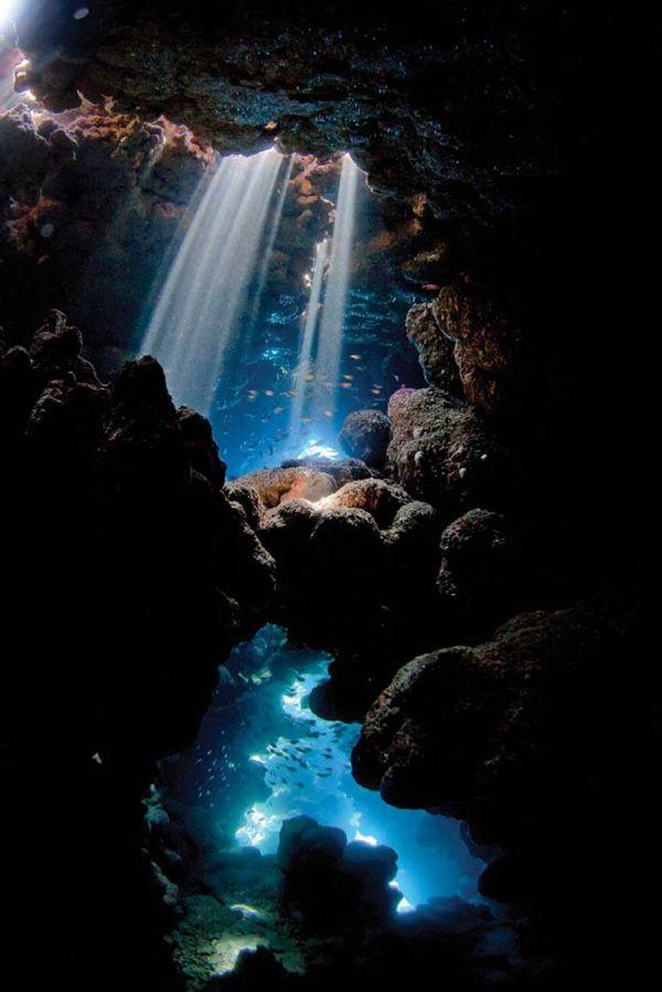 Scuba Diving Magazine's 2013 Photo Contest Winners   Underwater Photography   Scuba Diving Photos   Scuba Diving