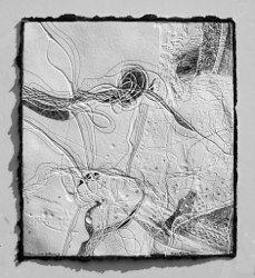 Flotsam and Jetsam IX embossed drawing, unique.  Image34x30 unframed £225 framed 51x50cm POA  by Brenda Hartill