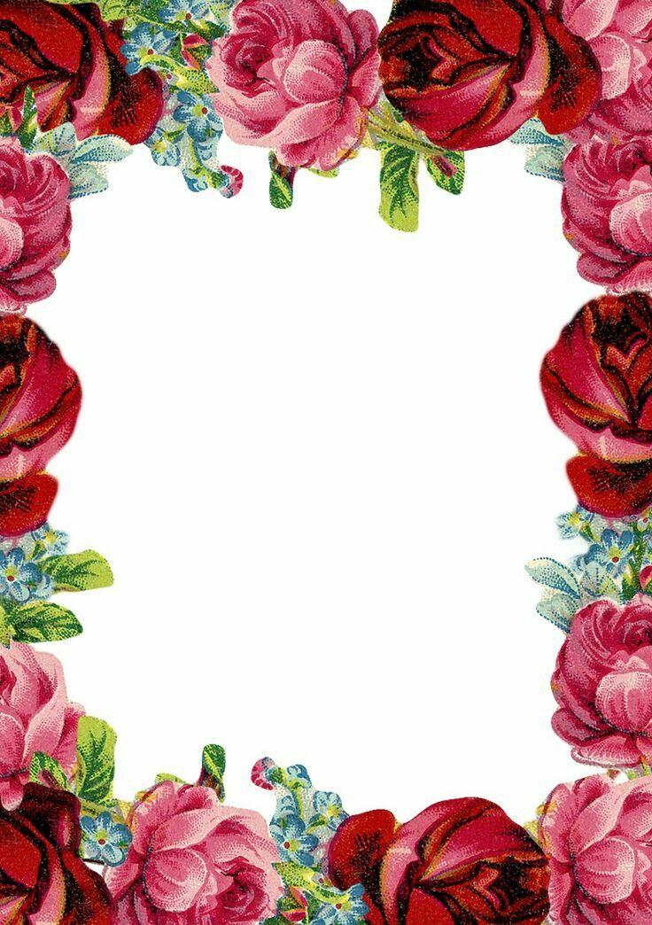 Цветы картинки по краям
