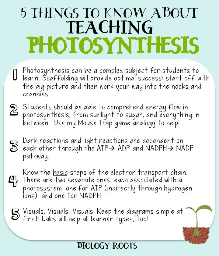 "5 Helpful Tips about Teaching Photosynthesis (formerly ""5 Things to Know about Teaching Photosynthesis). Photosynthesis can be a difficult subject to teach. I've tried at least 3 different ways and these are the 5 tips I have to offer."