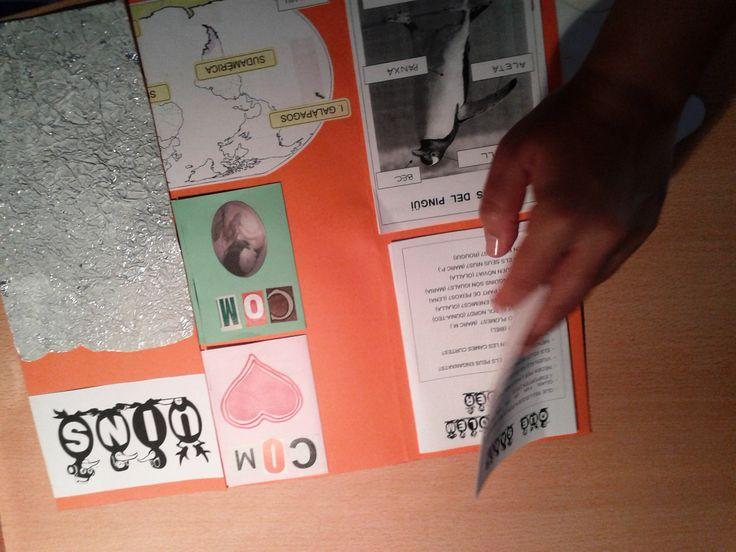 Projecte Pingüins. Presentació LAPBOOK 6