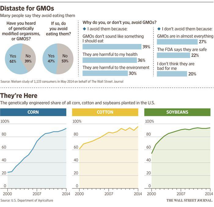 Persuasive speech about genetically motified foods