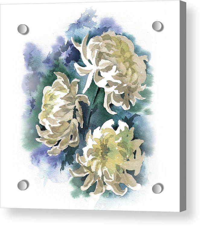White Chrysanthemum Flowers Acrylic Print By Ina Petrashkevich In 2020 Chrysanthemum Painting Chrysanthemum Watercolor White Chrysanthemum