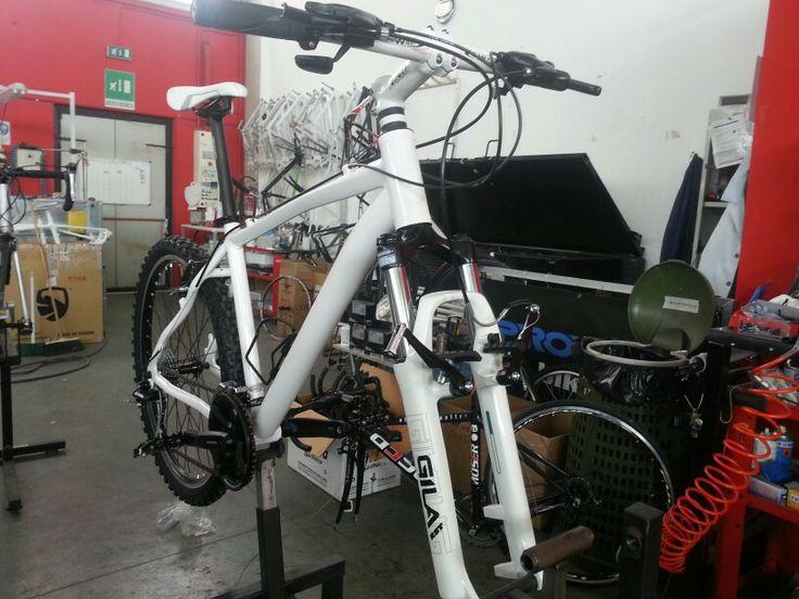 wolftour bike