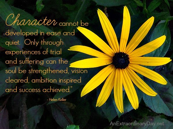 Character Quote by Helen Keller :: The Week at a Glance 8/24 - An Extraordinary Day