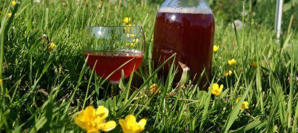 Całoroczna nalewka (wino) na miażdżycę wg przepisu Stefanii Korżawskiej   Kochaj i Twórz