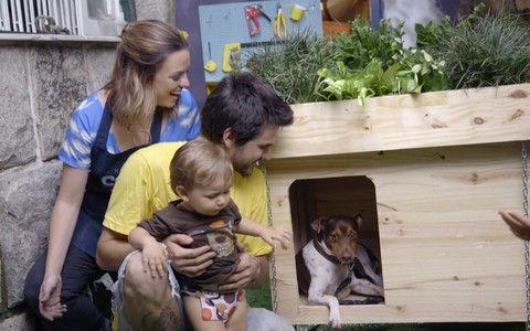 Aprenda a fazer uma casinha de cachorro com teto verde que também funciona como jardineira