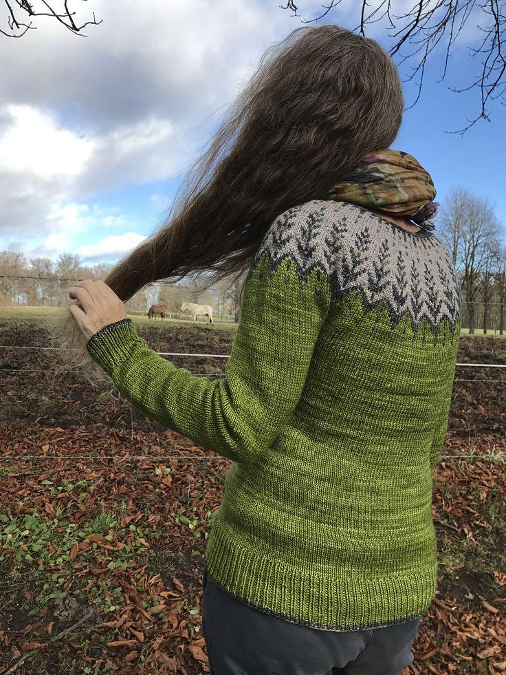 Ravelry: Vintersol by Jennifer Steingass