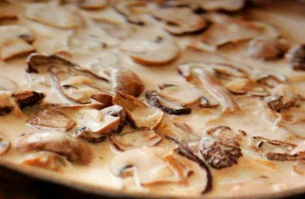 Houby nakrájíme na tenké plátky a na rozpuštěném másle orestujeme. Zalijeme vodou, osolíme a vaříme do měkka. ...