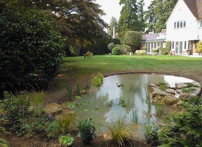 Great blog about creating this wildlife pond by one of the pond and water feature experts in the UK, Claudia de Yong.